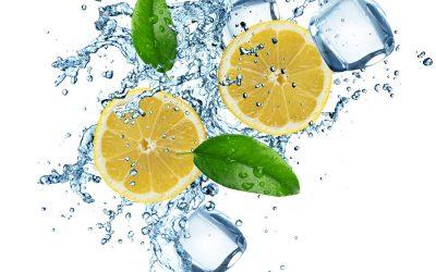 LieberLieber Software: LemonTree bringt frischen Schwung in die Modell-Versionierung