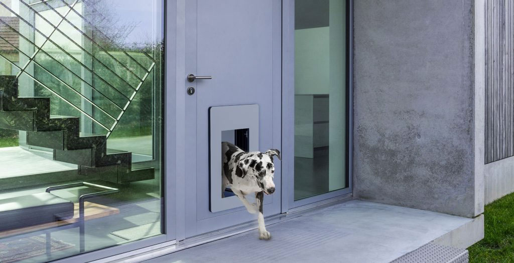 LieberLieber Software Next-generation doors for cats and dogs & LieberLieber Software: Next-generation doors for cats and dogs ...
